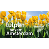 Uitnodinging kick off Tulpen boven Amsterdam